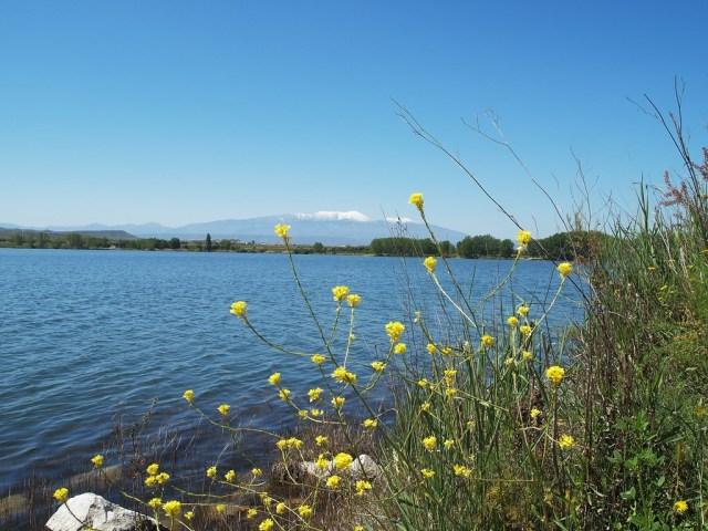 Laguna de Lor, Ablitas