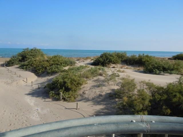 Desde mirador playa de Riumar