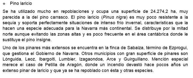 laricio1